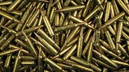 556 shells.jpg