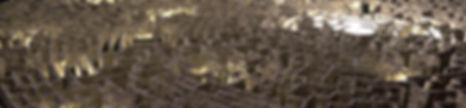 maze-2264.jpg