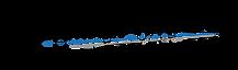 Learjet 45--01.png