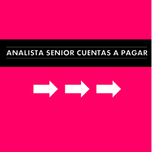 Procurement Senior Analyst