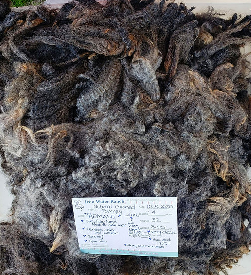 Raw Romney Lamb Fleece - Armani
