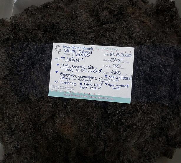 Raw Merino Lamb Fleece - Arich