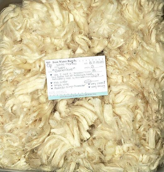 Raw Merino Fleece - Lady Genevieve