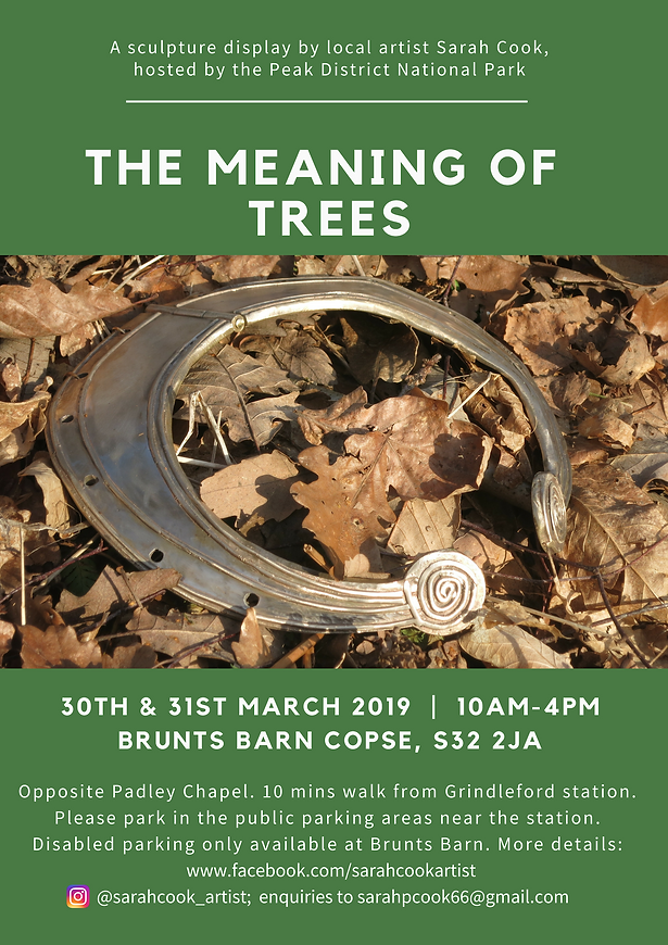 Meaning Of Trees Flyer.png