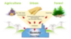 biomass energy.jpg