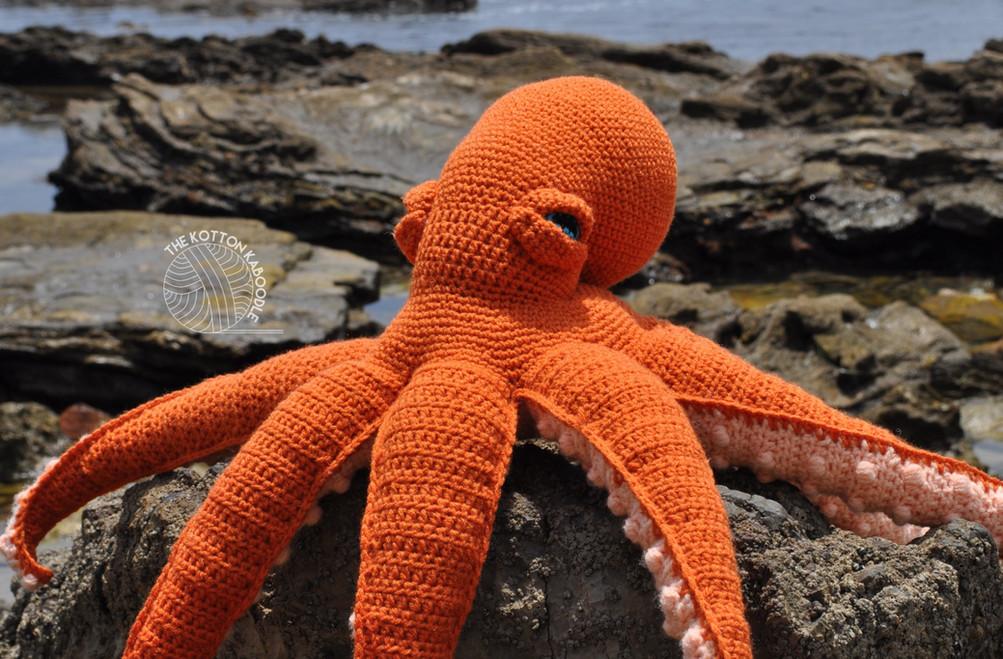 Orlando the Octopus