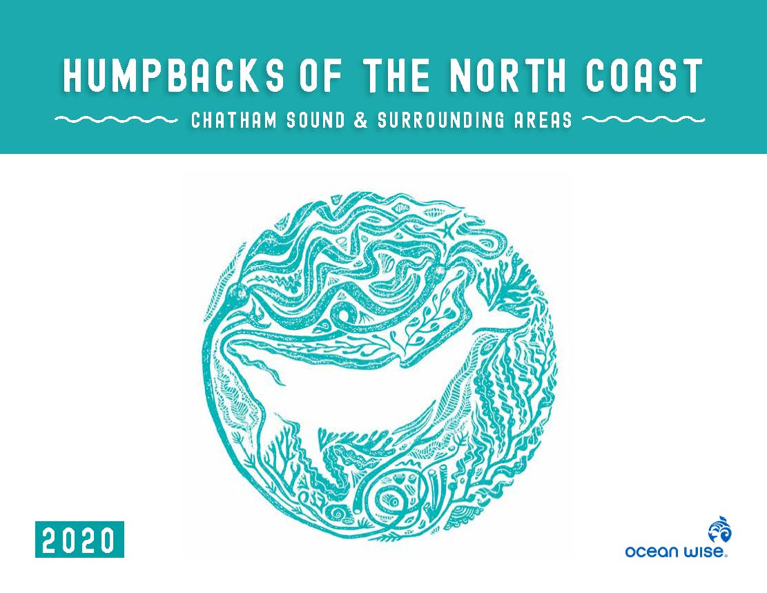 Humpbacks of the North Coast