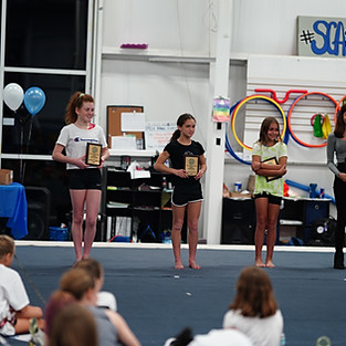Athlete Recognition