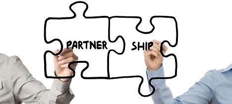 Strategic Partner.jpg