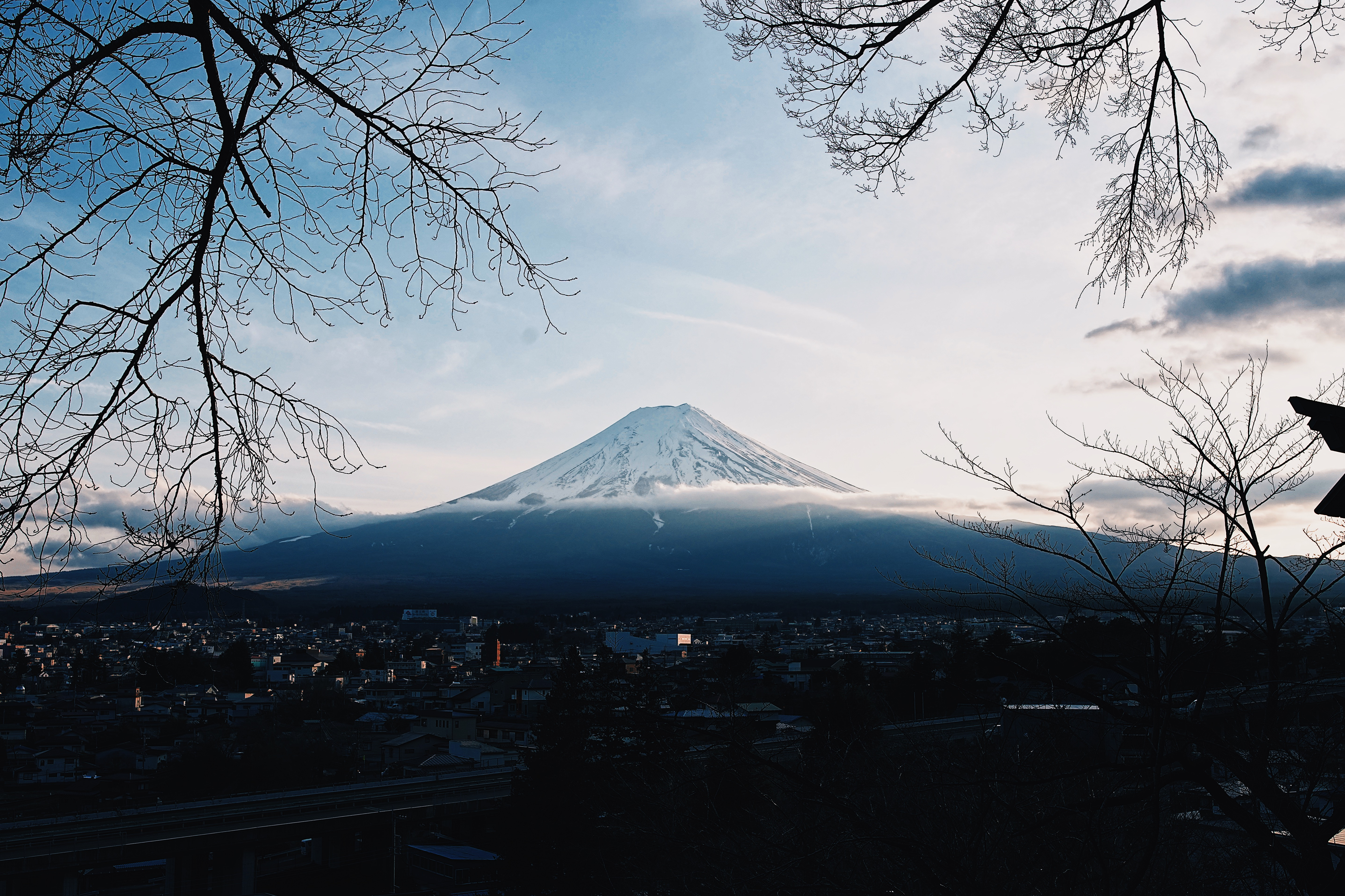 JapanTrip2020Feb1,097