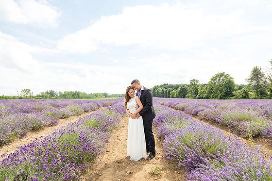 montreal-lavender-photoshoot.jpg