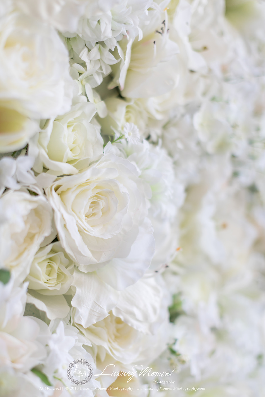 montreal wedding photographer