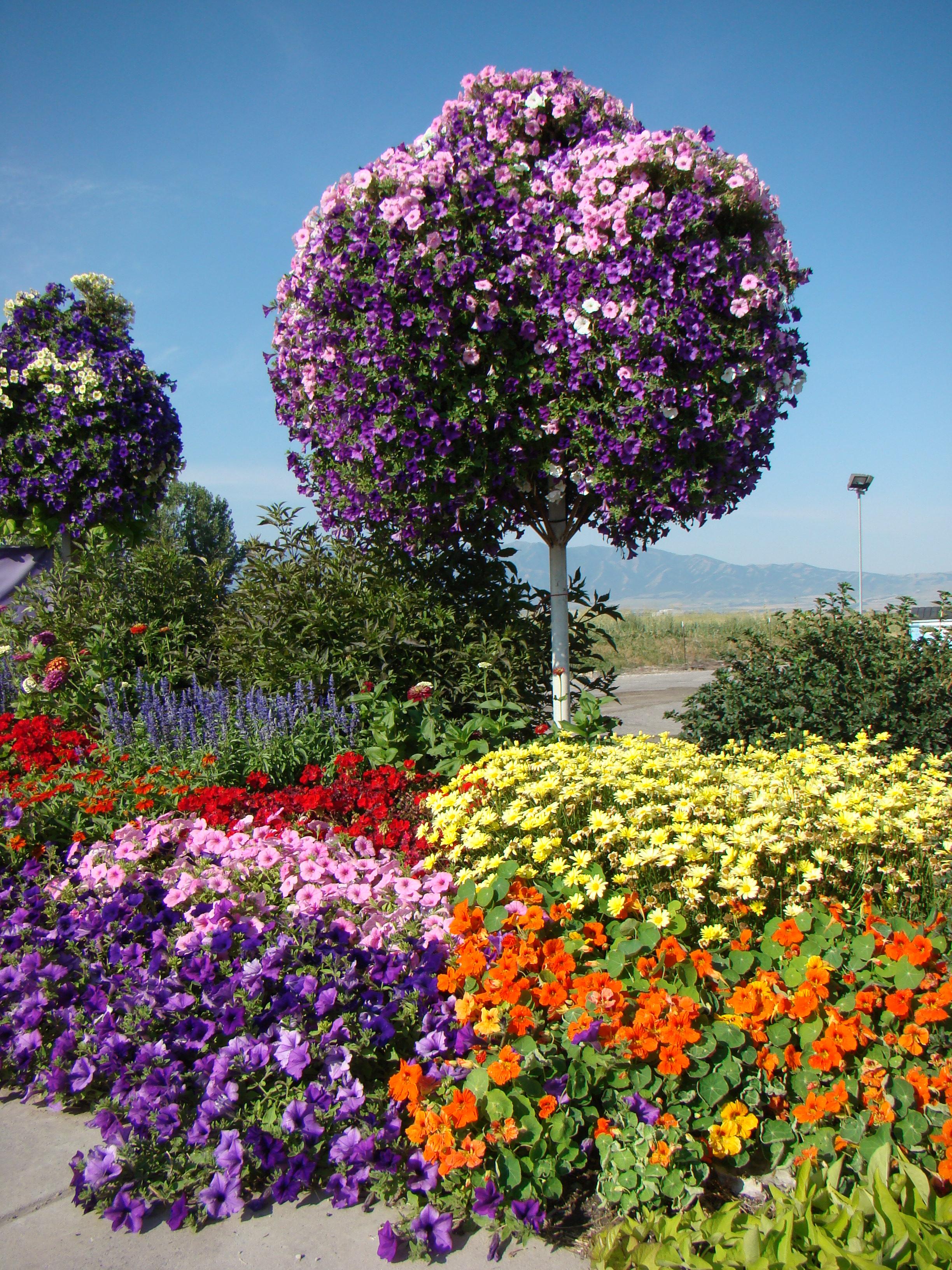 Garden gateway garden center logan utah greenhouse logan for Garden gateway