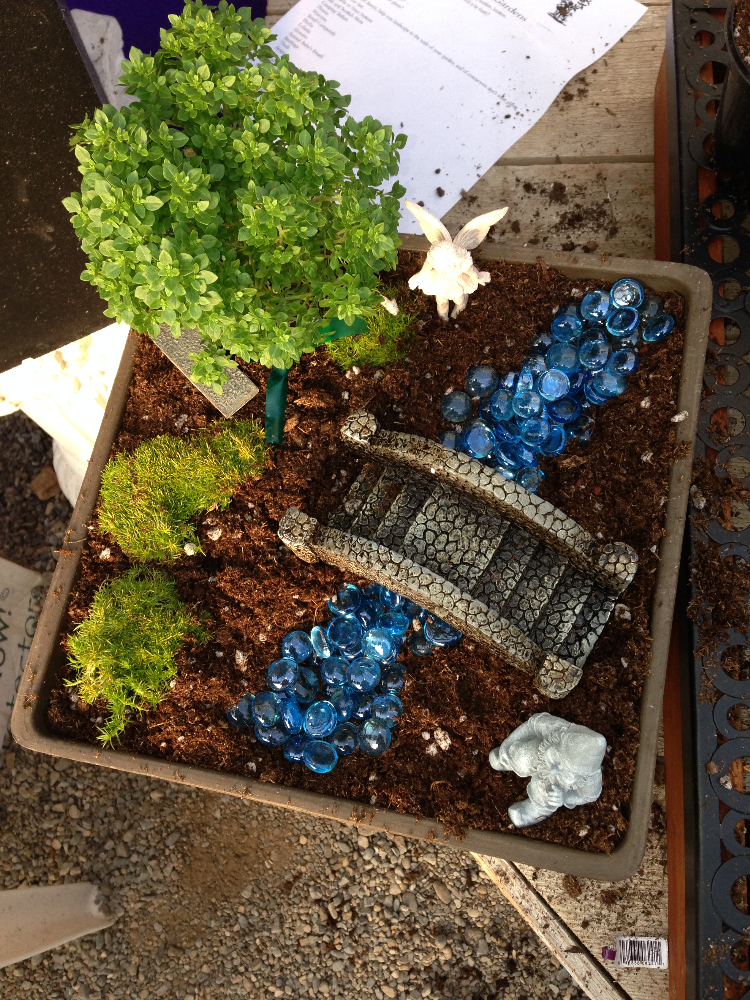 Hyde Park Garden Center Fairy Garden