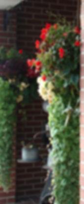 Hyde Park Utah Greenhouse | Hyde Park Utah Garden Center | Utah Hanging Baskets | Utah Patio Containers | Logan Utah Greenhouse | Logan Utah Garden Center| Logan Utah Hanging Baskets | Logan Utah Perennial Plants | Hyde Park Utah Perennial Plants