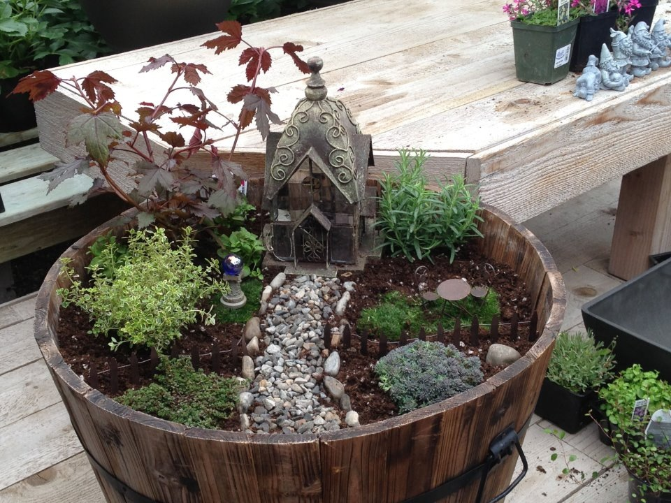 Logan Utah Greenhouse - Fairy Garden