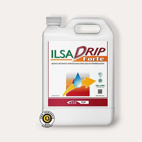 ILSA-DRIP.jpg