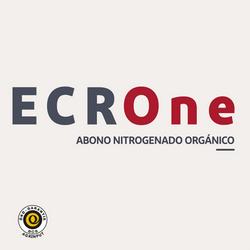 ECROne logo 1