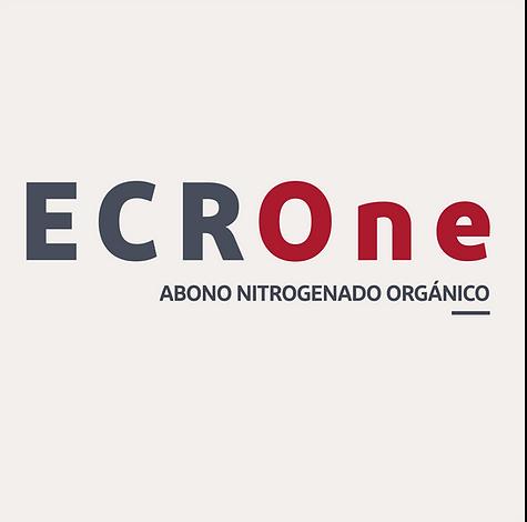 ECROne logo.png