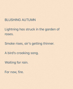 BLUSHING AUTUMN