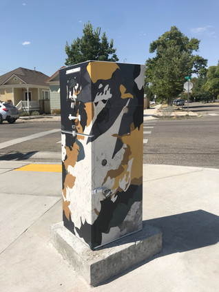 boise traffic box - 17th and idaho st