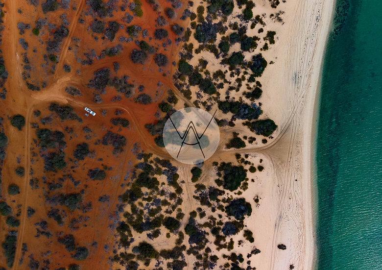 MONKEY MIA - Western Australia