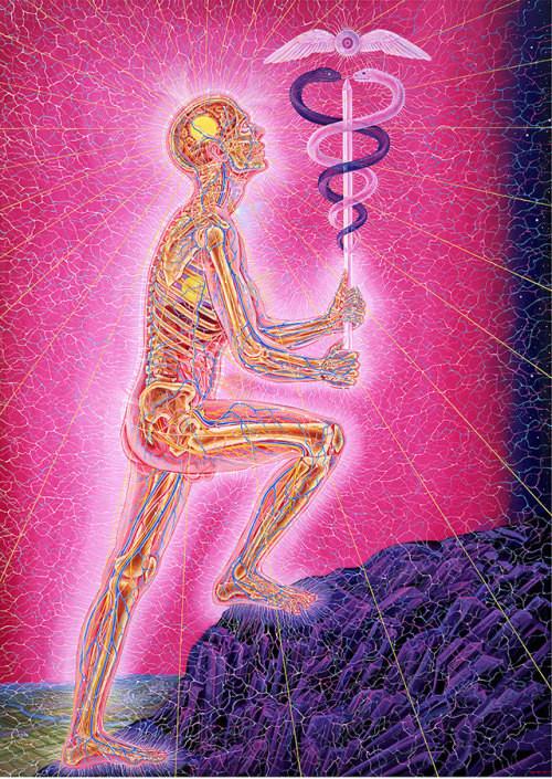 Body journey