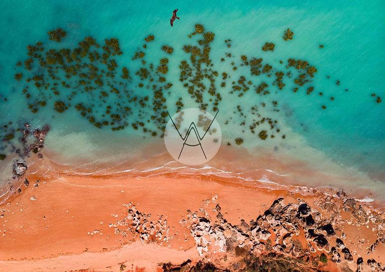 ROEBUCK BAY - Western Australia