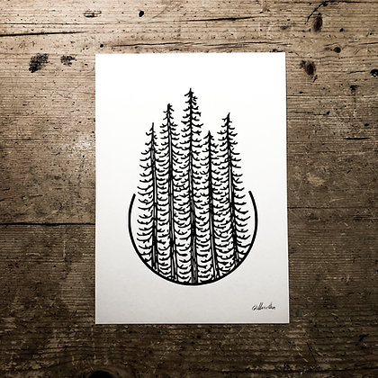 Pines - Signed a5 print