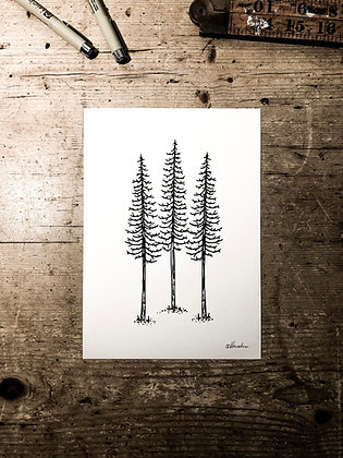 Lonely pines -Signed a5 print