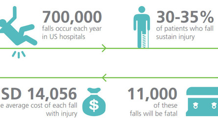 Facility Costs for Falls: An Examination of Figures