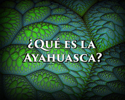 ¿Qué es la Ayahuasca?