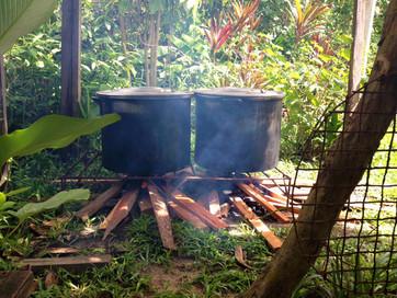 ¿Sabes quién cocina tu Ayahuasca?