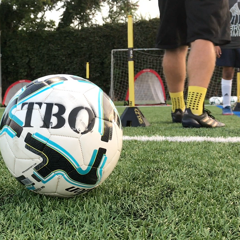 Top Bins Only        Half Day Evening    The Ultimate Series Camp