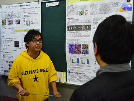 学科の卒業研究発表会が開催されました