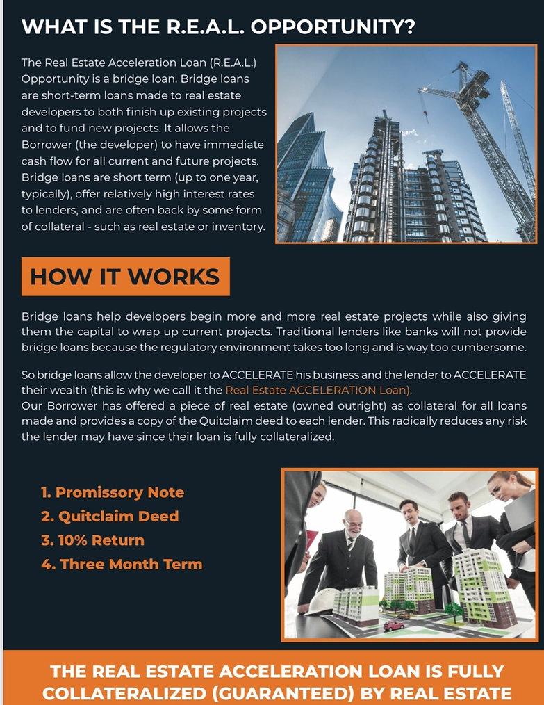 The Real Estate Acceleration Loanpg 2.jp