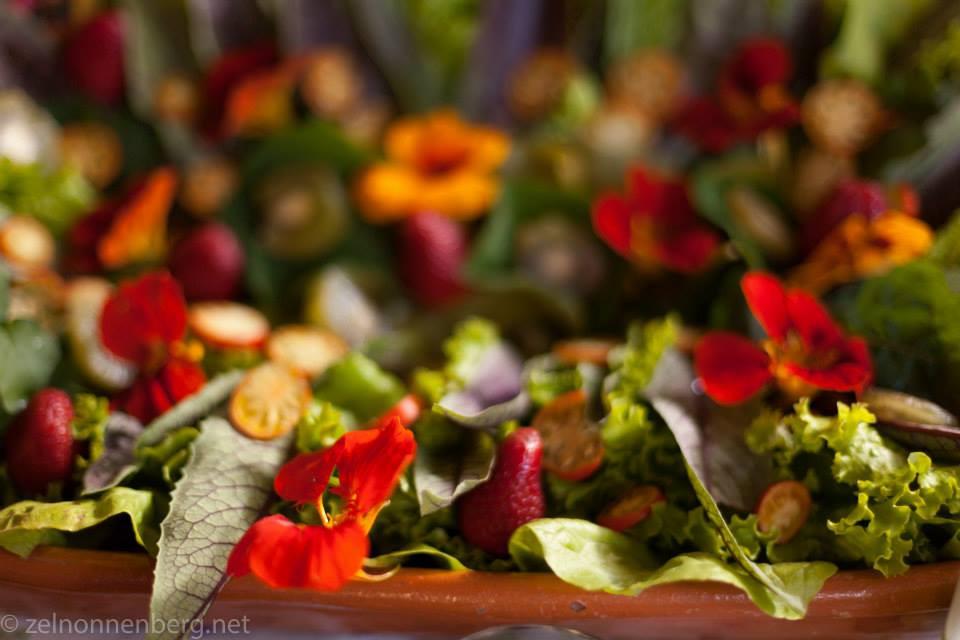 Salada PANC