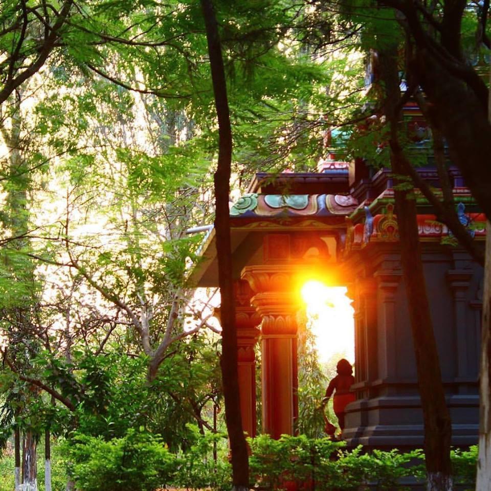 Nascer do Sol no campus do Arya Vaidya Pharmacy