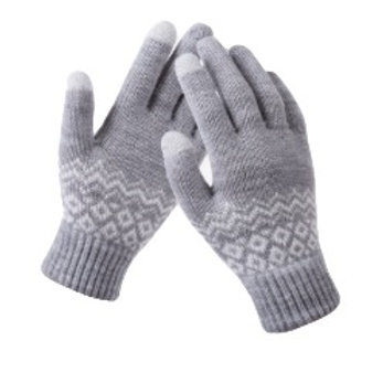 Touchscreen Gloves- Swiss Grey