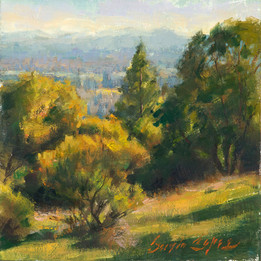 7x7_Sergio_Lopez_The_Valley_From_Shiloh_