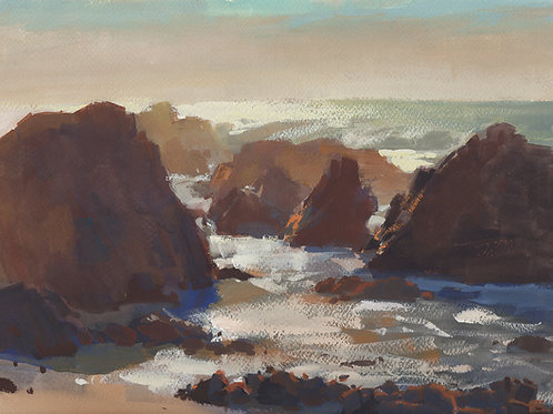 Afternoon At Bodega Head Beach