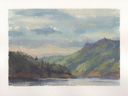 Paint Drip #153 Lake Sonoma Study 1