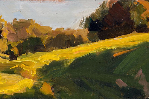 """Taylor Mountain Sketch"" Oil on canvas board."
