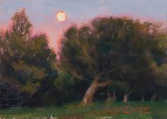 5x7_Sergio_Lopez_The _Moon_In_Lavender_f