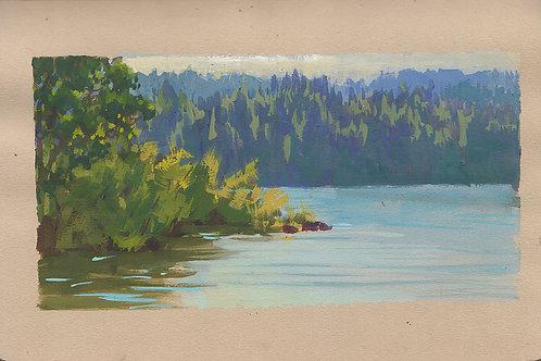 Paint Drip #83 Lake Britton
