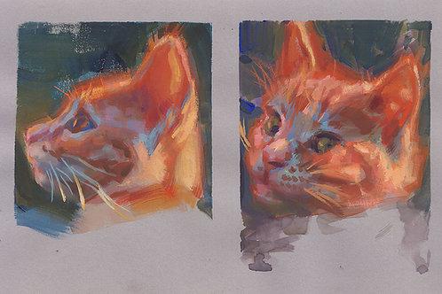 Paint Drip #93 Studies of Moose