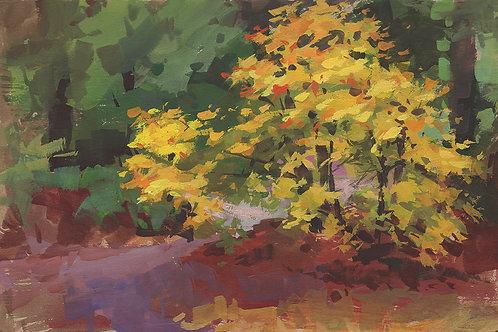 Paint Drip #142 Creekside Tree Sketch
