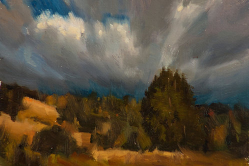 """""""Austin Creek Park View"""", 4x6"""" oil painting on linen"""