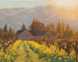 8x10_Sergio_Lopez_Early_Spring_Vineyards
