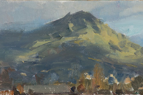 """Mt. Tam Study"" Oil on canvas board."